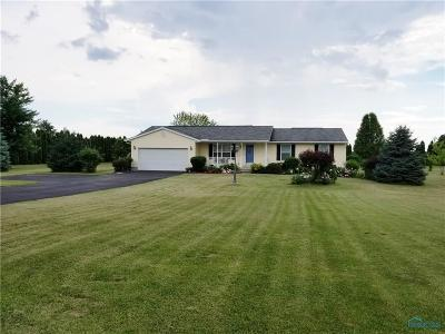 Waterville Single Family Home For Sale: 9638 S Berkey Southern Road