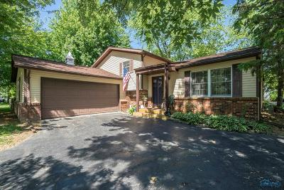 Perrysburg Single Family Home For Sale: 28790 S Bramblewood Road