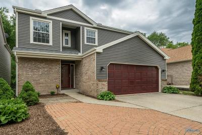 Toledo Single Family Home Contingent: 7135 Old Mill Road