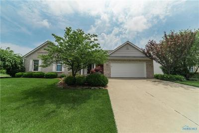 Maumee Single Family Home For Sale: 6569 Buck Creek Drive