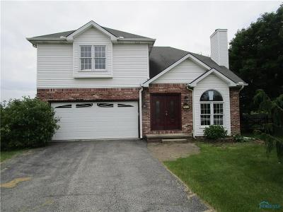 Perrysburg Single Family Home For Sale: 7401 Twin Lakes Road