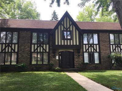 Sylvania Condo/Townhouse For Sale: 6539 Abbey Run #D-6