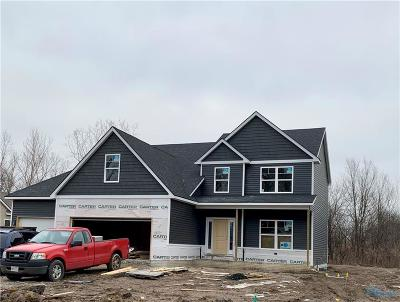 Perrysburg Single Family Home For Sale: 28970 Simmons Road