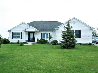 Perrysburg Single Family Home For Sale: 8871 Five Point Road