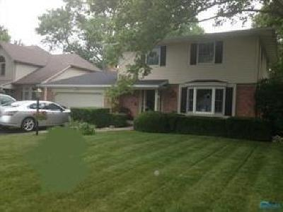 Perrysburg Single Family Home For Sale: 1029 Pine Street