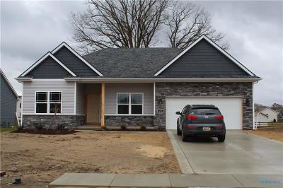Holland Single Family Home For Sale: 247 Hidden Village Lane