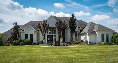 Ottawa Hills, Monclova, Oregon, Rossford, Swanton, Berkey, Metamora, Lyons, Whitehouse, Waterville Single Family Home For Sale: 3564 Brown Road