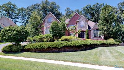 Sylvania Single Family Home For Sale: 4641 Crosstick Court