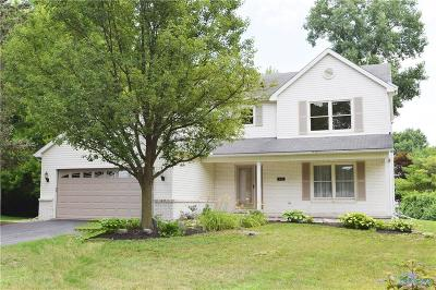 Holland Single Family Home For Sale: 331 S Centennial Road