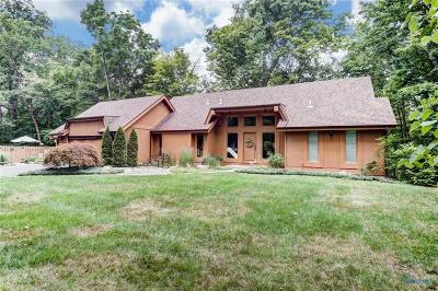 Perrysburg Single Family Home Contingent: 25908 W River Road