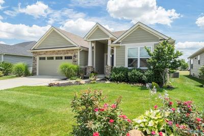Perrysburg Single Family Home For Sale: 25113 Rocky Harbour Drive