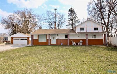 Sylvania Single Family Home For Sale: 5039 Heather Place