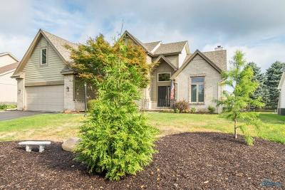 Sylvania Single Family Home For Sale: 7548 Red Pines Drive
