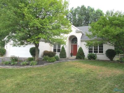 Holland Single Family Home Contingent: 8425 Churchill Downs Court