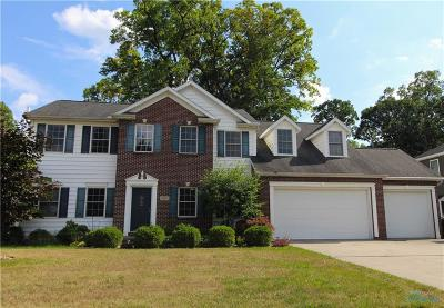 Holland Single Family Home For Sale: 7843 Pilliod Road