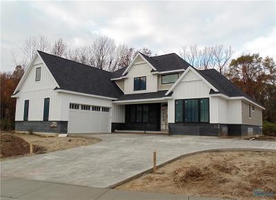 Sylvania Single Family Home For Sale: 7512 Larberg Lane