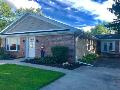 Grand Rapids Single Family Home For Sale: 23789 W River Road