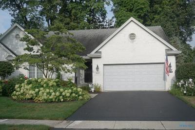 Toledo Condo/Townhouse For Sale: 6507 Carrietowne Lane