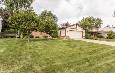 Maumee Single Family Home For Sale: 2564 Bonnie Lane