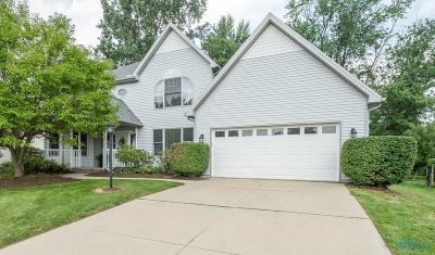 Sylvania Single Family Home For Sale: 6720 Sweet Bush Court