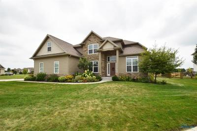 Sylvania Single Family Home For Sale: 9211 Windy Brook Court