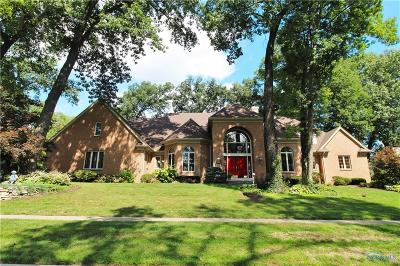 Holland Single Family Home For Sale: 9126 Oak Valley Road