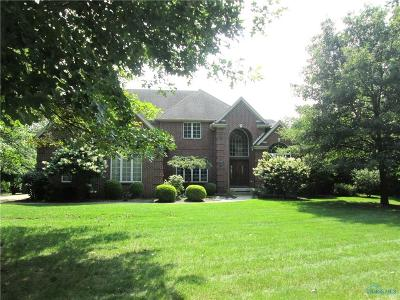 Sylvania Single Family Home For Sale: 4801 Cinnamon Lane