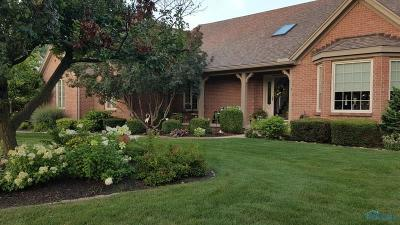 Perrysburg Single Family Home For Sale: 29432 Belmont Lake Road