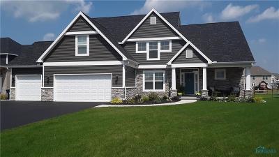 Monclova Single Family Home For Sale: 7916 Iron Horse Road