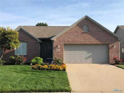 Perrysburg Condo/Townhouse For Sale: 10146 S Shannon Hills Drive