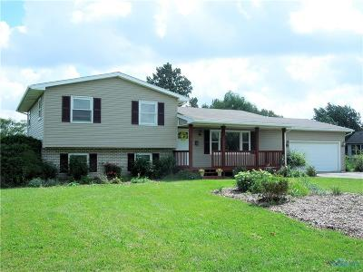Perrysburg Single Family Home For Sale: 26818 Thompson Road