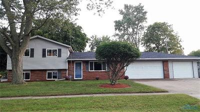 Holland Single Family Home For Sale: 426 Cheswick Road