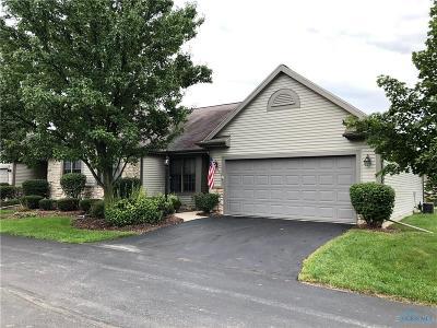 Perrysburg Condo/Townhouse For Sale: 14633 Dexter Falls Road