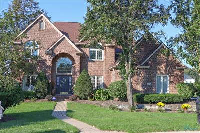 Holland Single Family Home For Sale: 8663 Plum Hollow Point