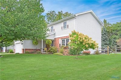 Perrysburg Single Family Home Contingent: 9946 Parliament Place