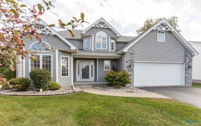 Perrysburg Single Family Home Contingent: 29734 Brookview Court