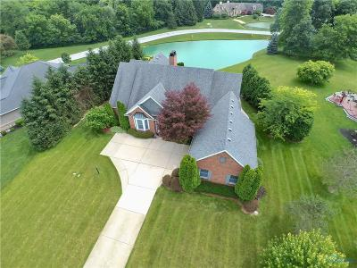 Perrysburg Single Family Home For Sale: 9601 Lisa Lane