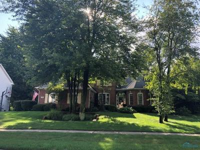 Holland Single Family Home For Sale: 660 Lost Lakes Drive