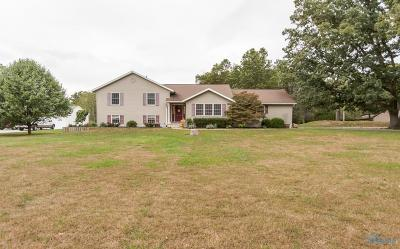 Holland Single Family Home For Sale: 9064 Frankfort Road