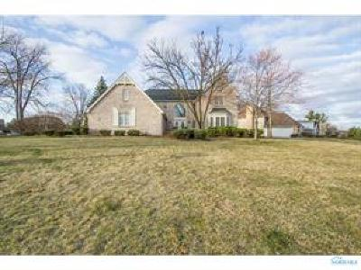 Sylvania Single Family Home For Sale: 7131 Oak Hill Drive