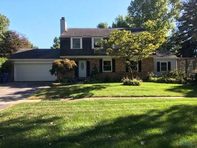 Sylvania Single Family Home For Sale: 7227 Brint Road