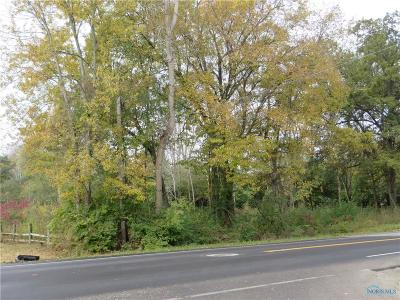 Toledo OH Residential Lots & Land For Sale: $39,900