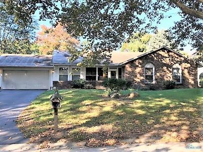 Toledo Single Family Home For Sale: 2368 Whitechapel Drive