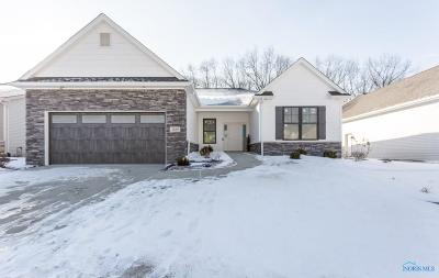 Toledo Single Family Home For Sale: 7539 King Acres Drive
