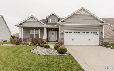 Ottawa Hills, Monclova, Oregon, Rossford, Swanton, Berkey, Metamora, Lyons, Whitehouse, Waterville Single Family Home For Sale: 9917 Charles Glen Lane