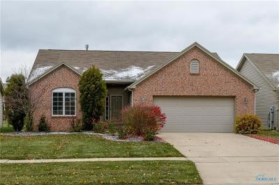 Perrysburg Condo/Townhouse For Sale: 10066 S Shannon Hills Drive