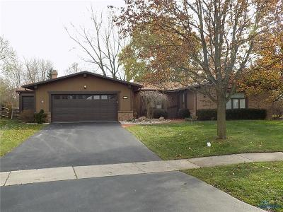 Sylvania Single Family Home For Sale: 7755 Dunhill Drive