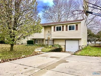 Perrysburg Single Family Home For Sale: 28725 Starlight Road