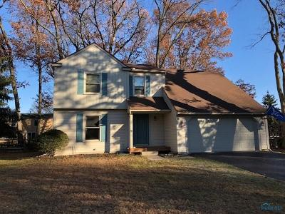 Sylvania Single Family Home For Sale: 3648 Woodspring Road