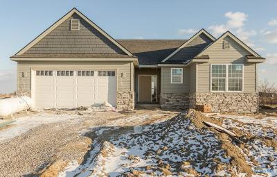 Perrysburg Single Family Home For Sale: 3313 Chasenwood Way